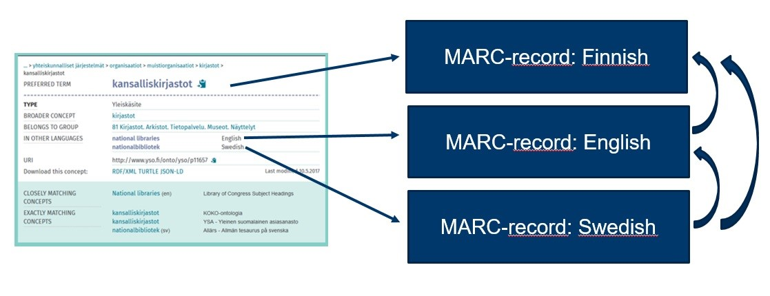 A diagram showing an excerpt from an YSO authority record with arrows pointing to MARC 21 authority records in Finnish, English, and Swedish, as well as arrows linking the authority records together.