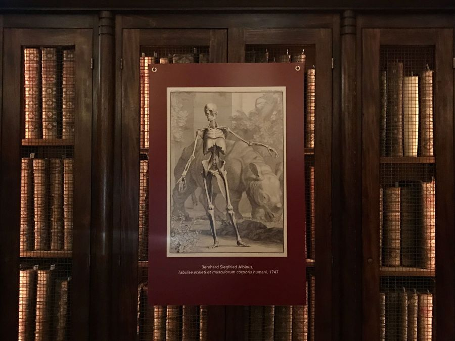 Kirjan kansi esimerkkinä Montpellierin yliopiston lääketieteen kirjaston kokoelmista.